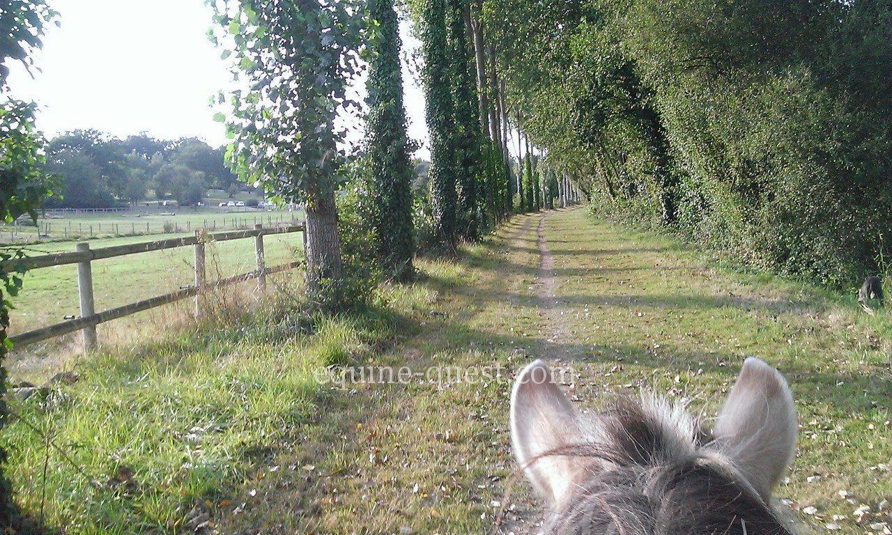 Mayenne area – Riding center