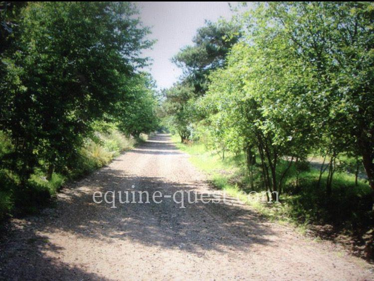 BELLE SITUATION – HARAS SUR 68 HECTARES