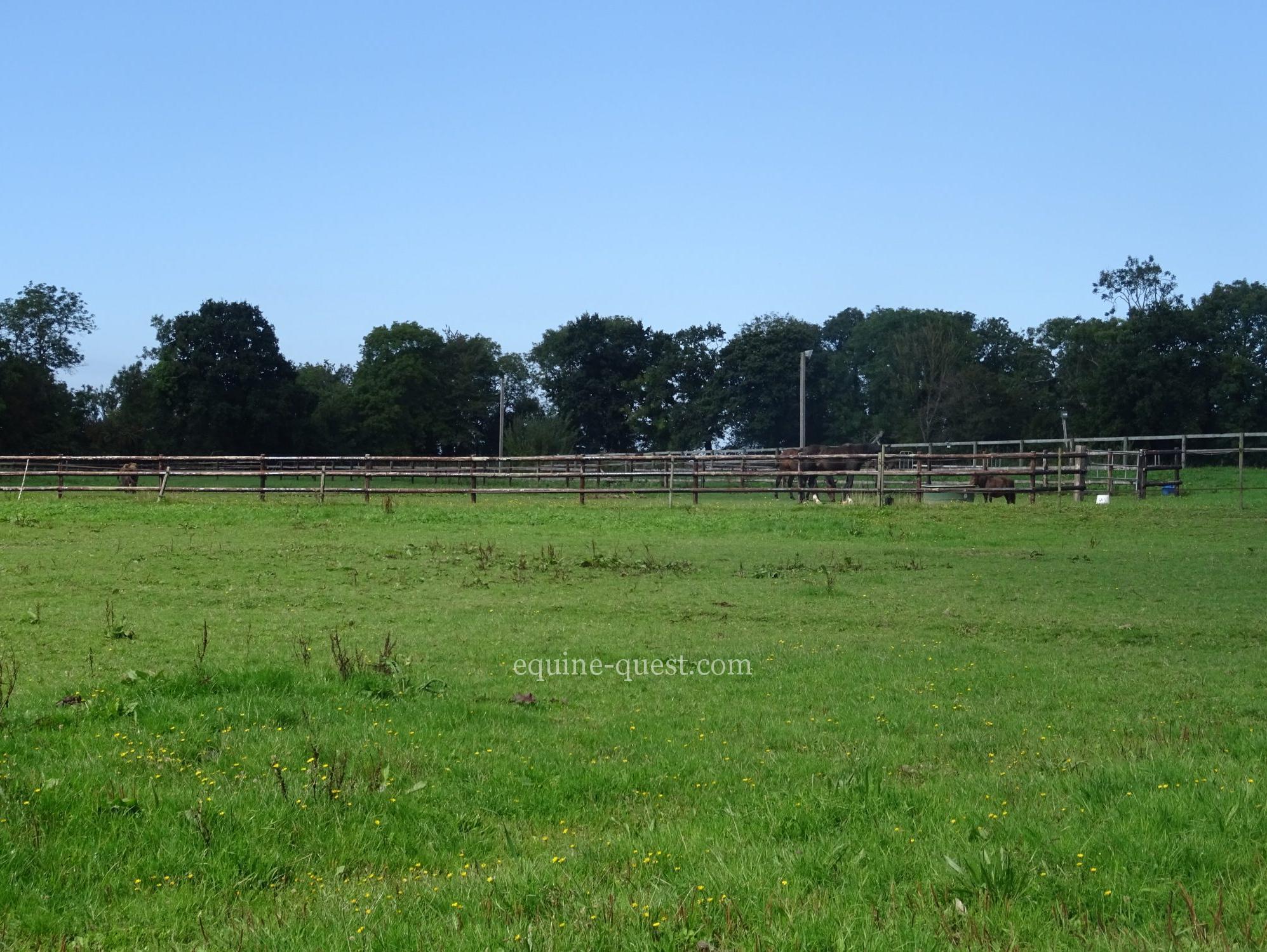Normandy –  Deauville area – Equestrian center
