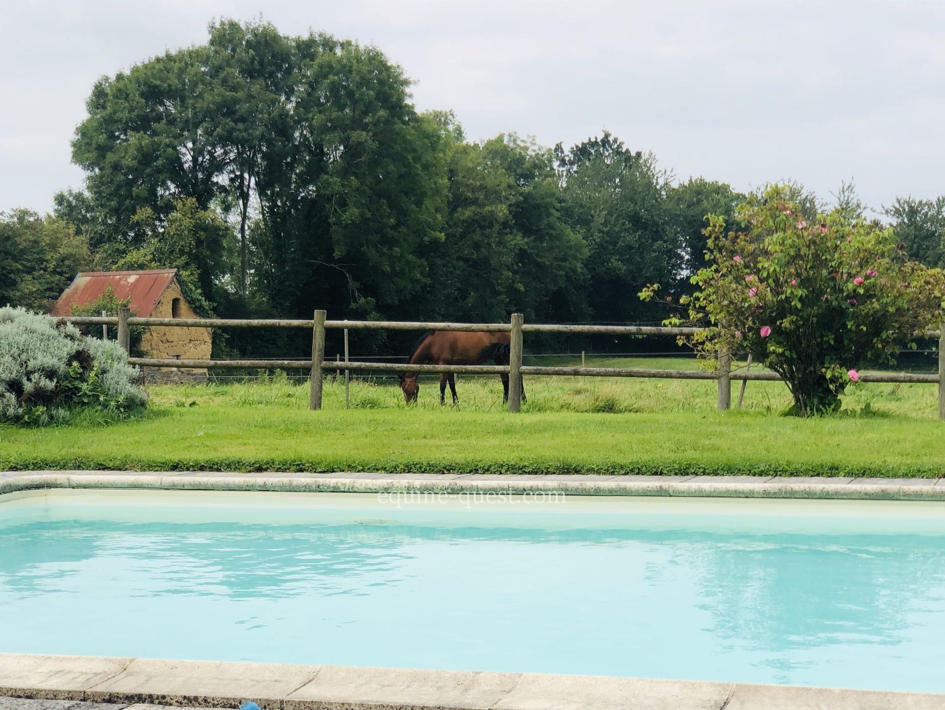 Charming equestrian property – Saint Lo area – Normandy