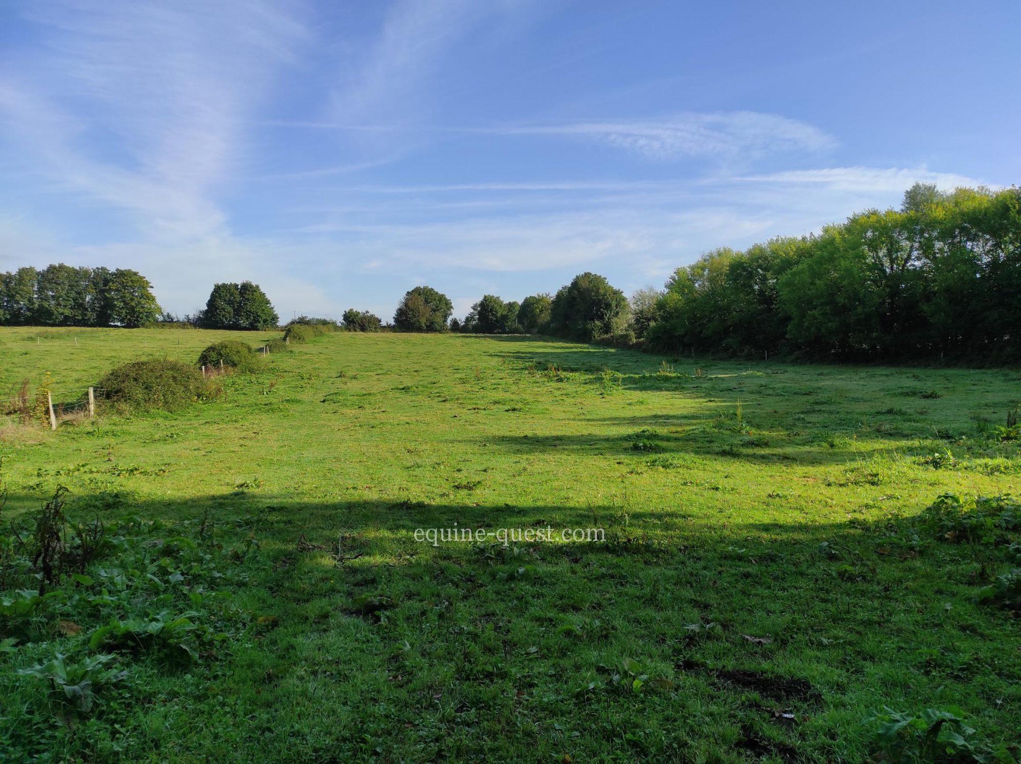 Equestrian property – Normandy -Saint Lo area